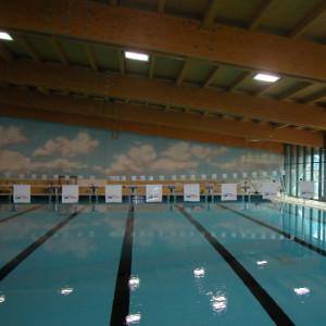 Oggiono lc piscina coperta arching - Piscina oggiono ...